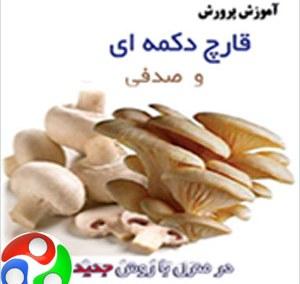 بهترين مجموعه آموزش پرورش قارچ در ايران - شامل ده سي دي