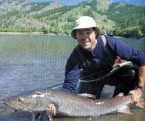 وي سي دي ماهي از صيد تا مصرف و ماهي قرمز
