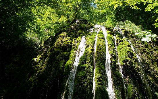 تور آبشار اسپه او و جنگل هزار جریب