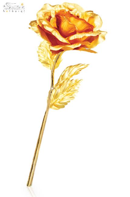 پخش گل رز طلا واردات مستقیم و بدن واسطه