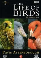 The Life of Birds – مستند زندگی پرندگان