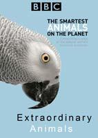 Extraordinary Animals – مستند حیوانات اعجاب آور