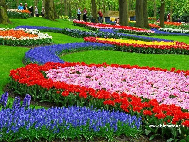 باغ کوکنهوف هلند