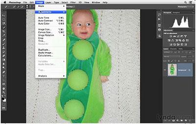 آموزش سطح مبتدی Photoshop CC – ویژه عکاسان