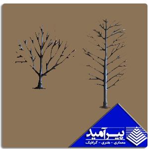تنه درخت آمريكائي سایزهای مختلف