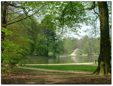 پارک زیبای بروکسل