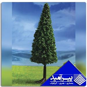 درخت كاج 6 - 5 سانت 1/100