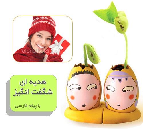 خرید لوبیای سحر آمیز با پیام فارسی