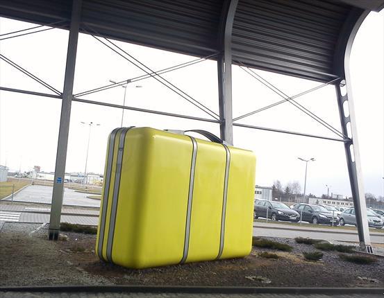 چمدانی پس از 20 سال پیدا شد