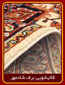 ریشه زنی فرش قالیشویی