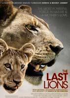 The Last Lions – مستند آخرین شیرها