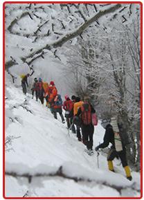 در برنامه های کوهنوردی مراقب گزش سرما باشید.