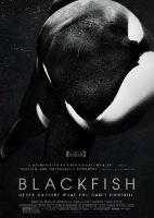 Blackfish – مستند ماهی سیاه