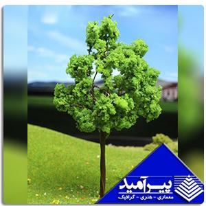 درخت پهن برگ 2 سانت  1/200