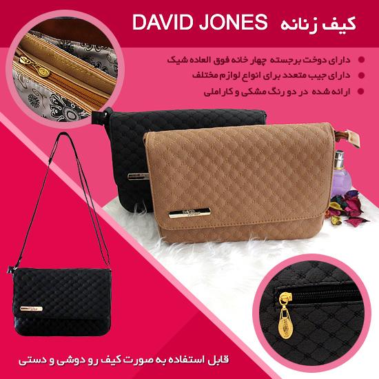 کیف زنانه David Jones