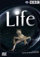 The Life – مستند زندگی