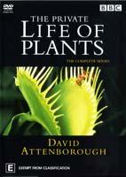 The Private Life of Plants – مستند زندگی خصوصی گیاهان