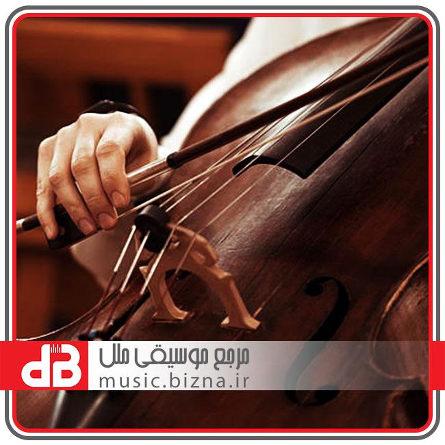 ویلنسل (cello)