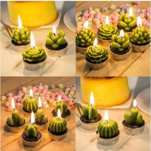شمع کاکتوس