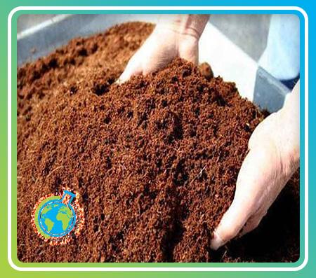 خاک کوکوپیت- Coco peat