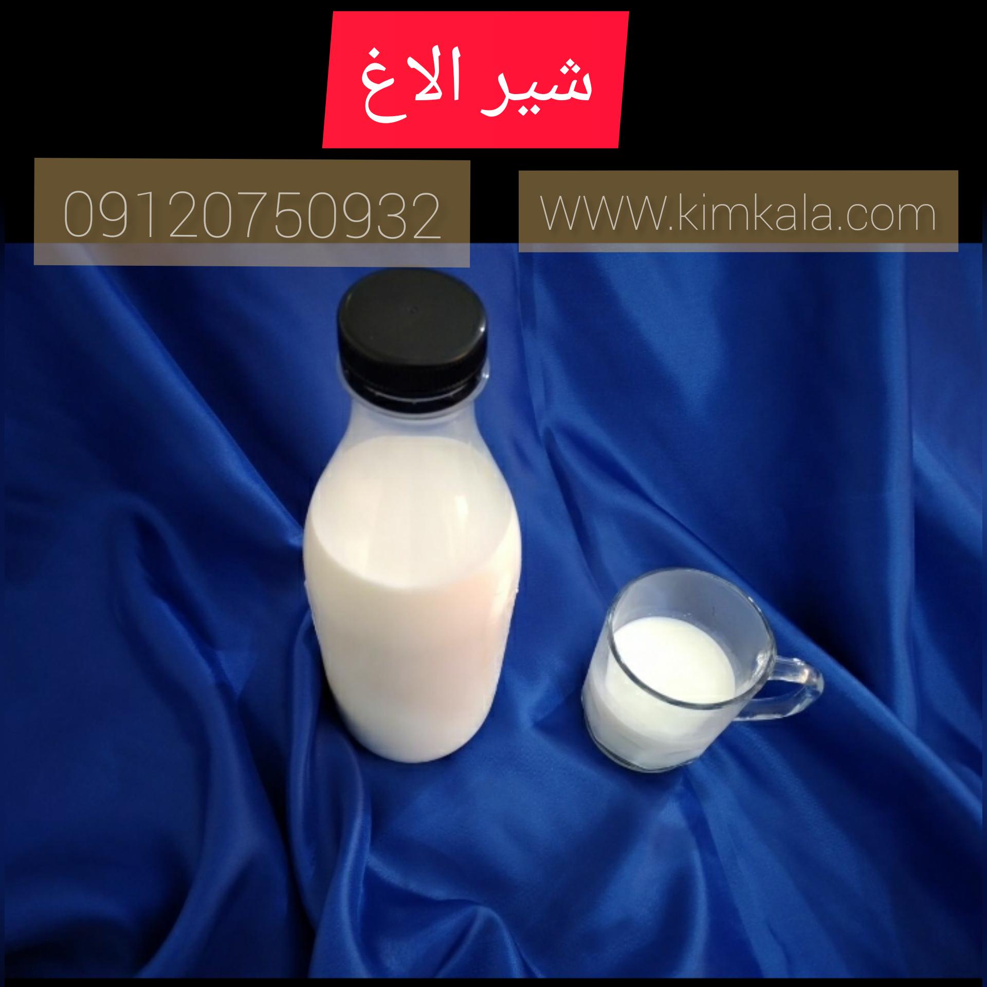 شیر الاغ/09120750932/قیمت شیر