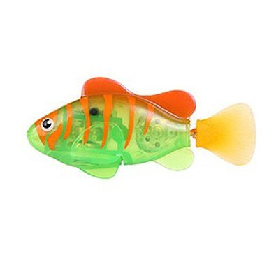 ماهی جینو 2 عدد