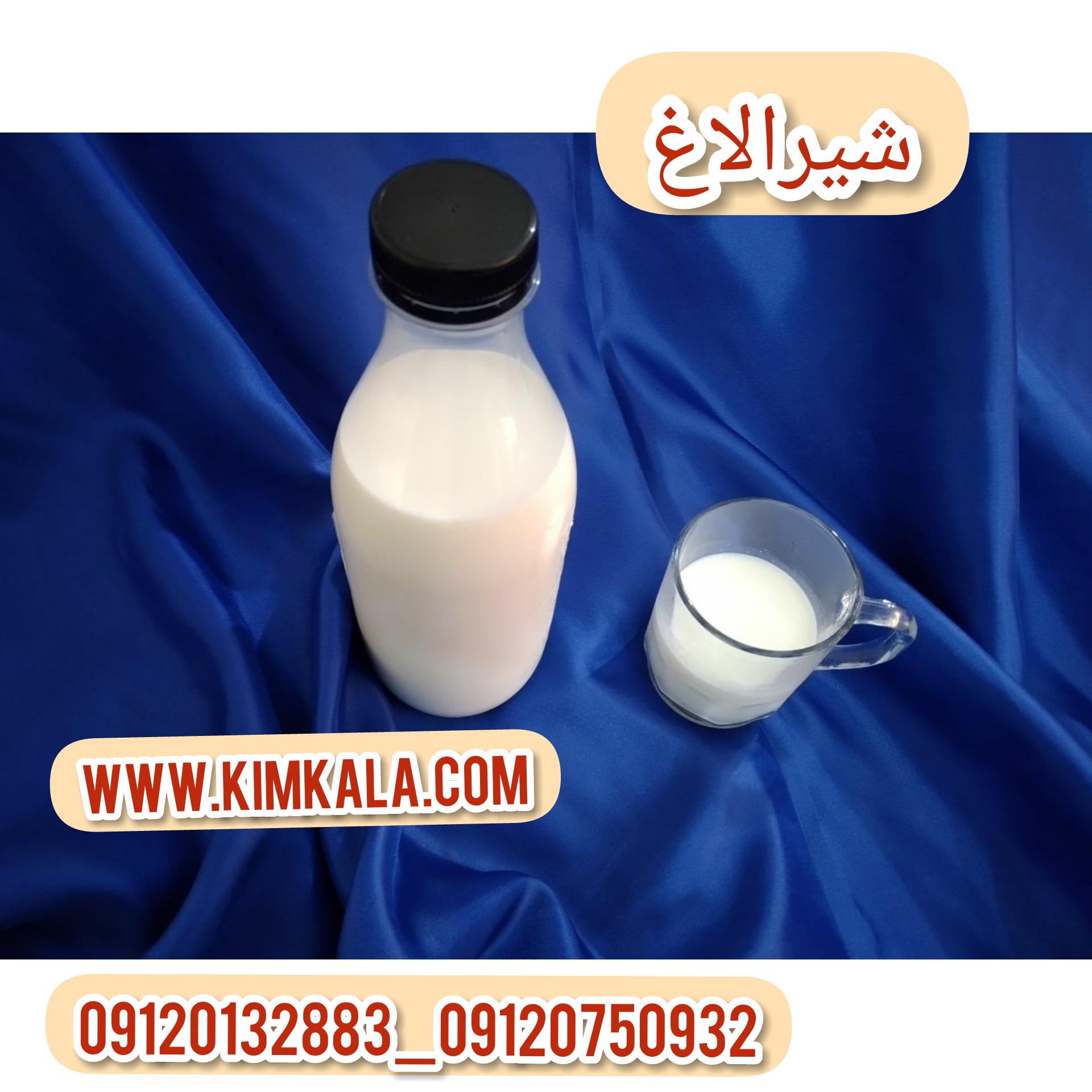قیمت شیرالاغ اصل۰۹۱۲۰۱۳۲۸۸۳/خواص شیرالاغ تازه